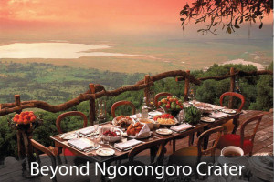 Beyond-Ngorongoro-Crater-Lodge