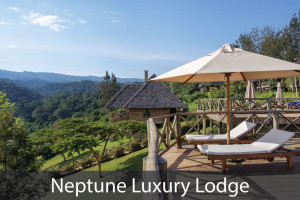 Neptune-Luxury-Lodge