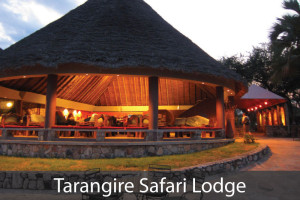 Tarangire-Safari-Lodge