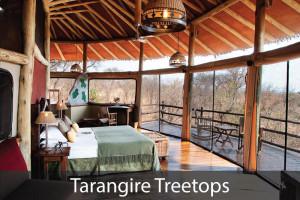 Tarangire-Treetops